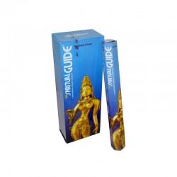 Padmini spiritual guide 6...
