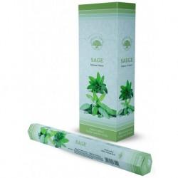 Sage incense (Green Tree)